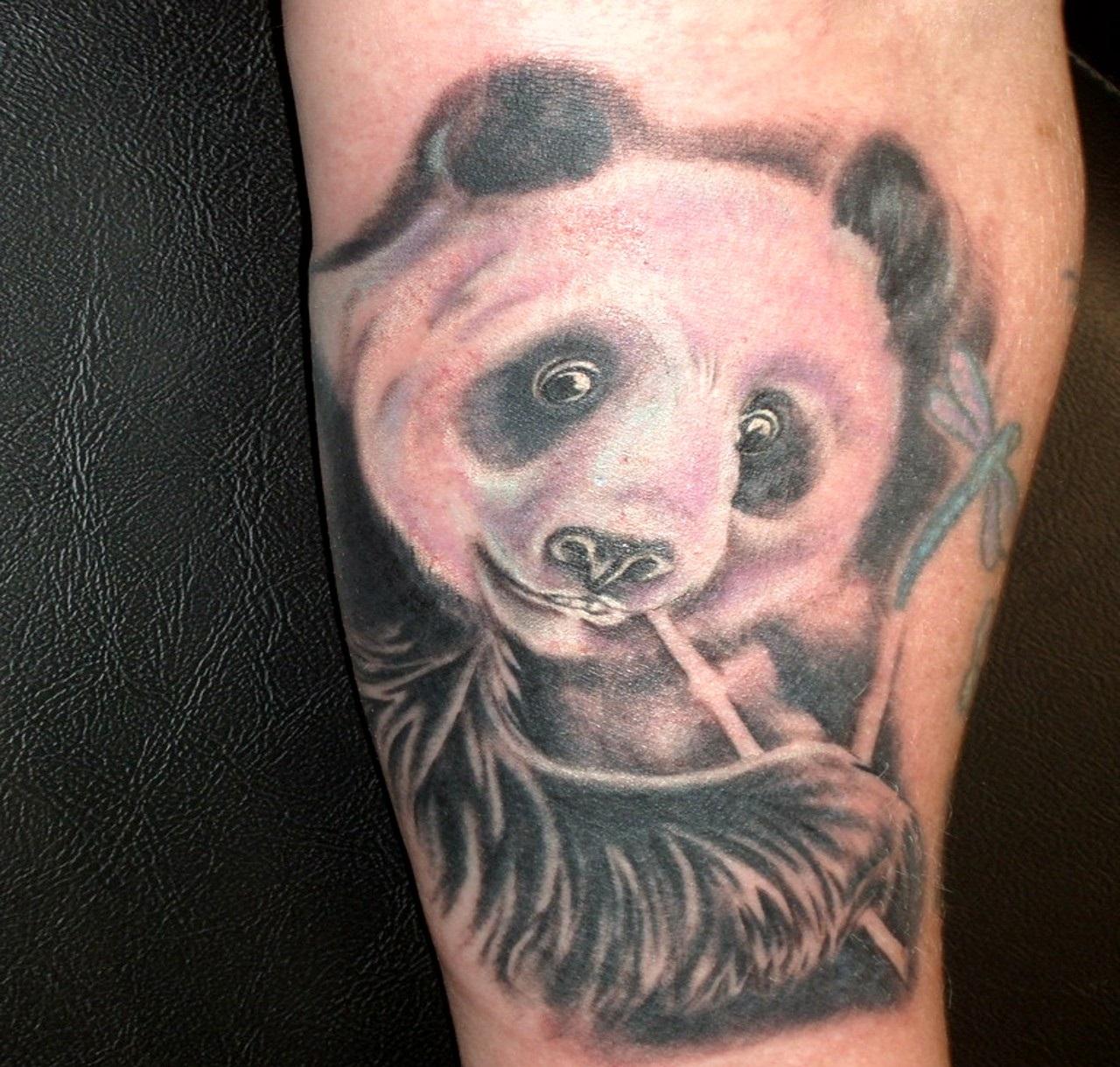 bear tattoos photo - 15
