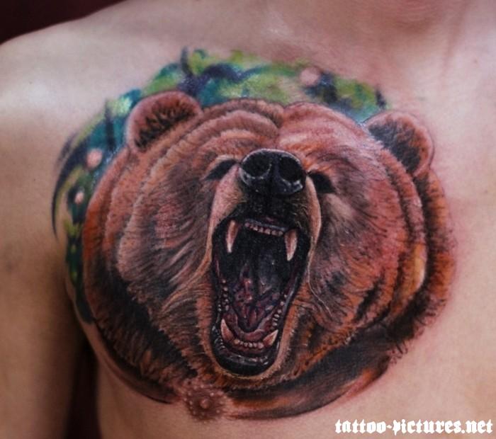 bear tattoos photo - 24