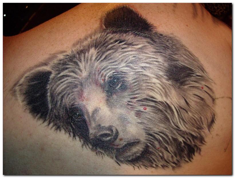 bear tattoos photo - 25
