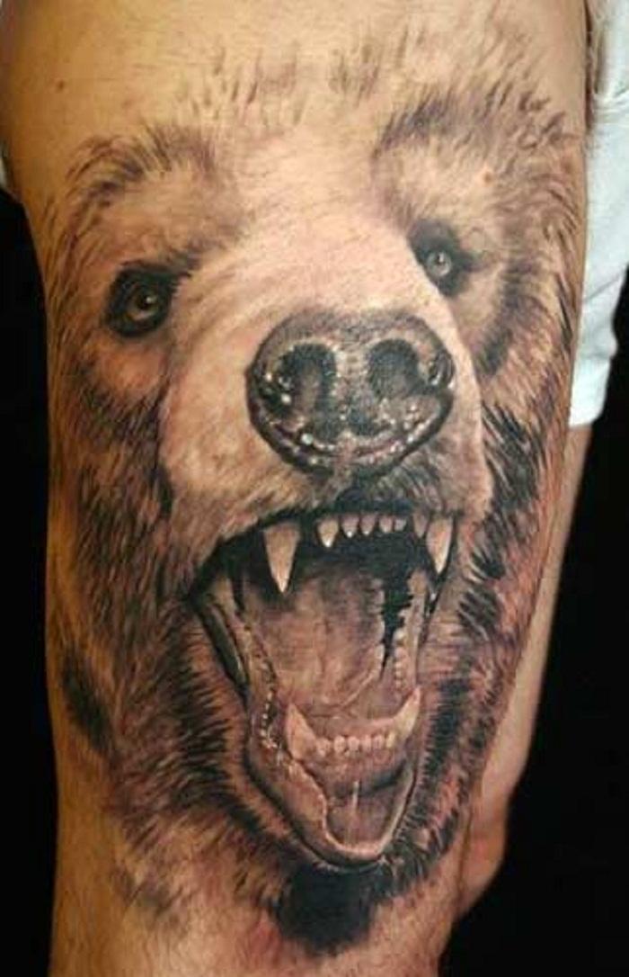 bear tattoos photo - 4