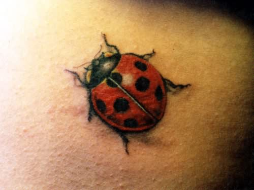 bug tattoos photo - 14