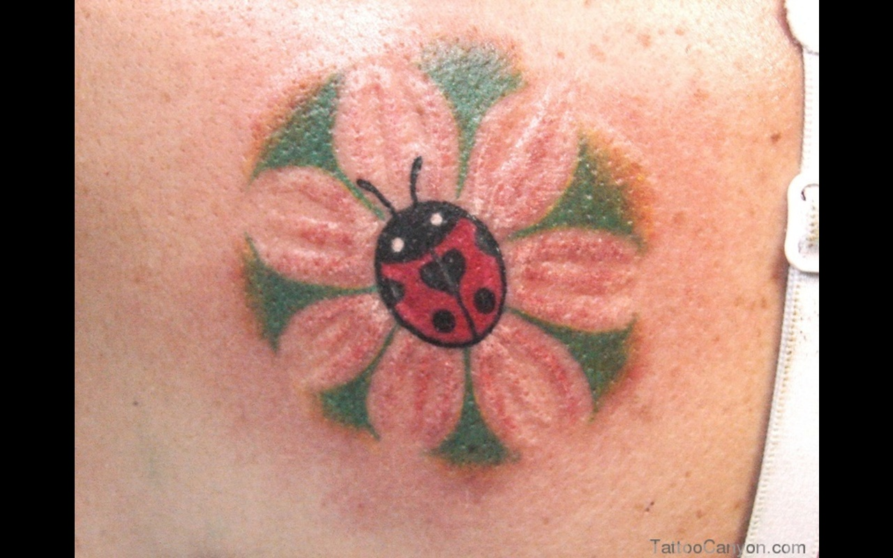 bug tattoos photo - 17
