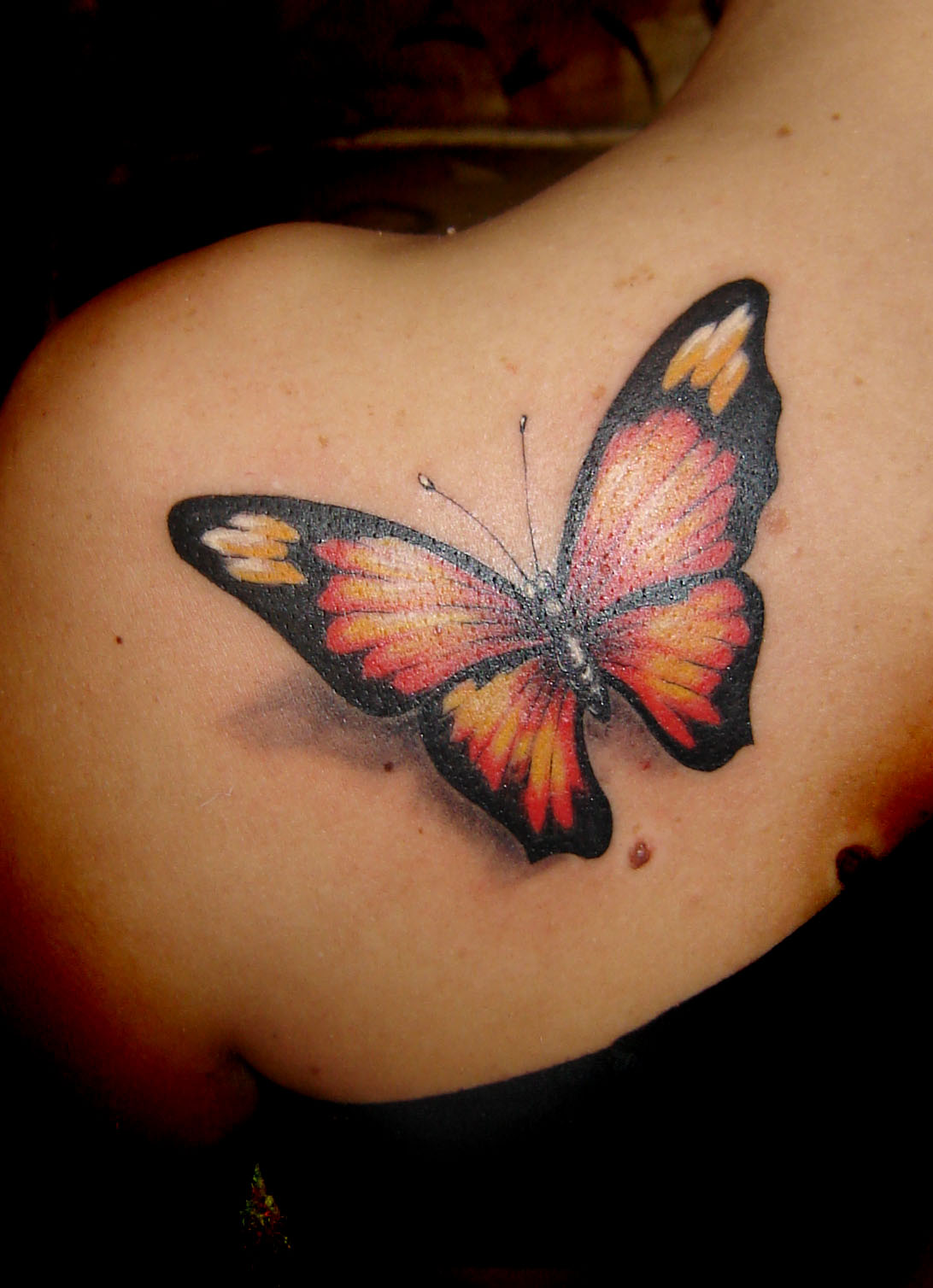 butterfly tattoos photo - 1