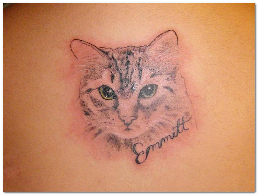 cat tattoos photo - 1
