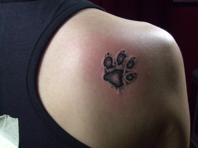 dog tattoos photo - 1