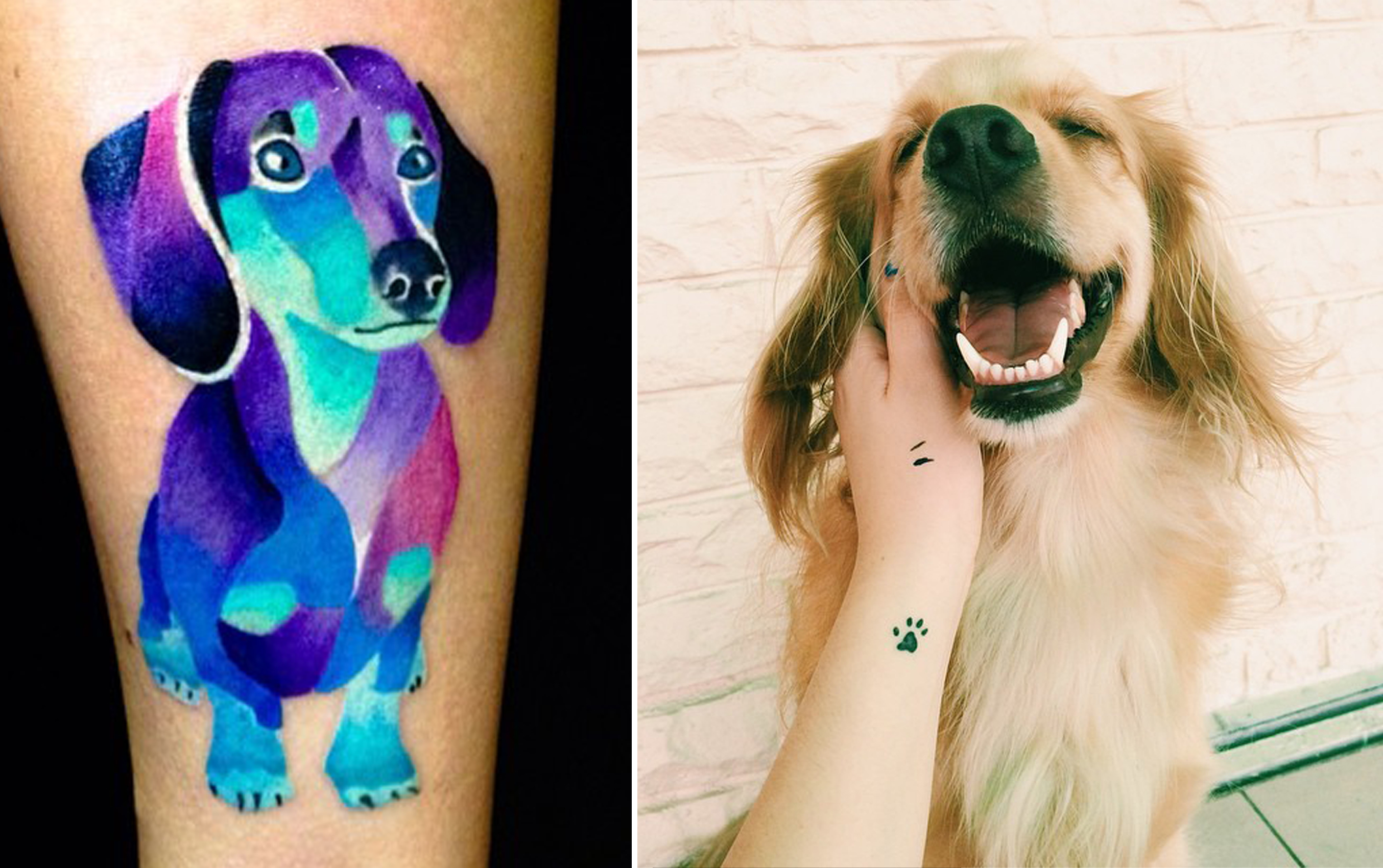 dog tattoos photo - 32