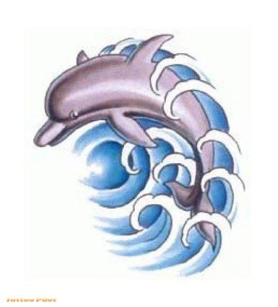 dolphin tattoos photo - 30