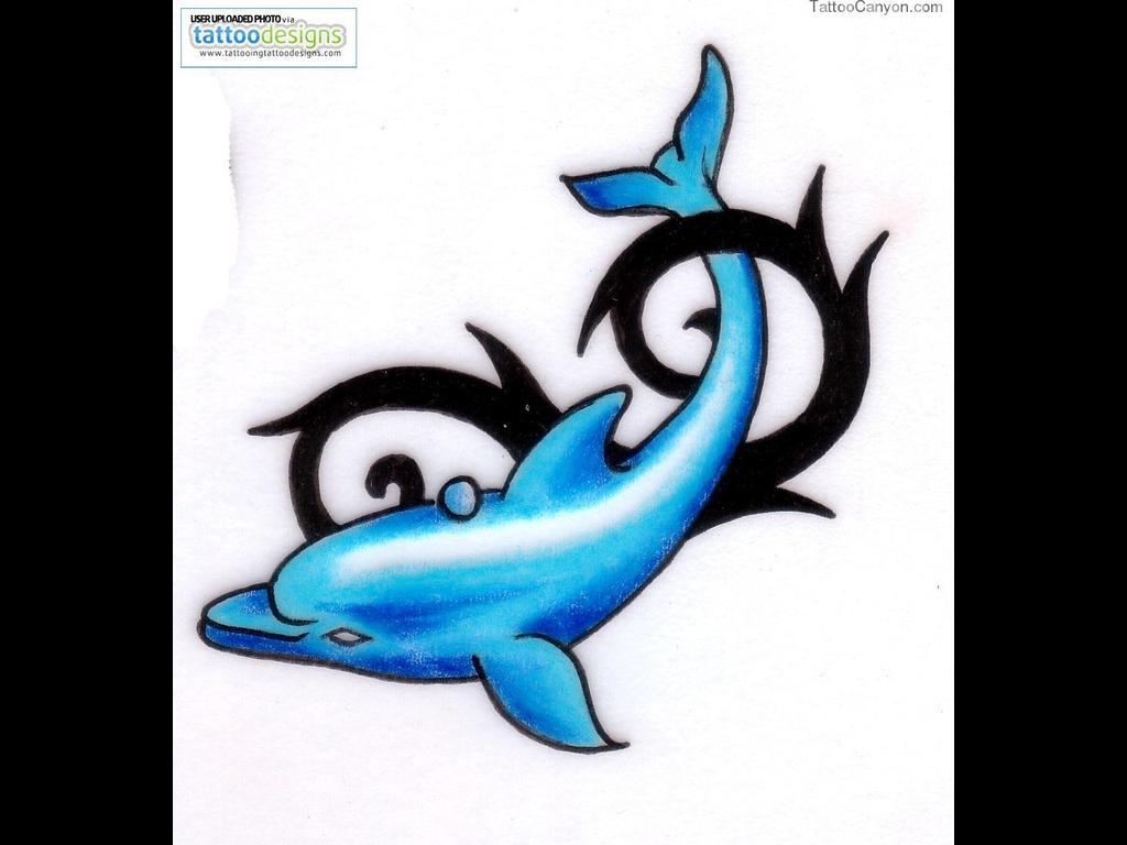 dolphin tattoos photo - 36