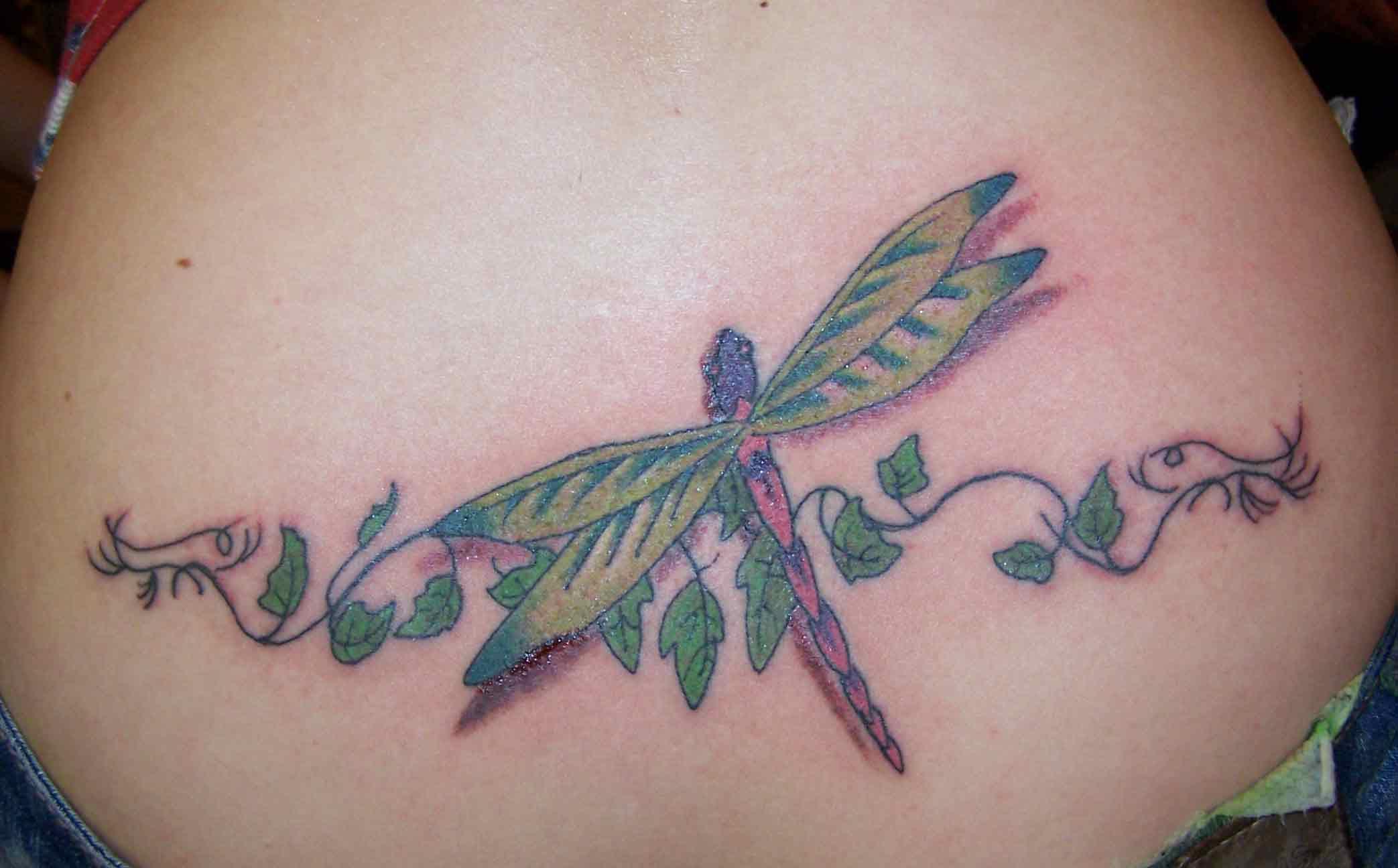 dragonfly tattoos photo - 47