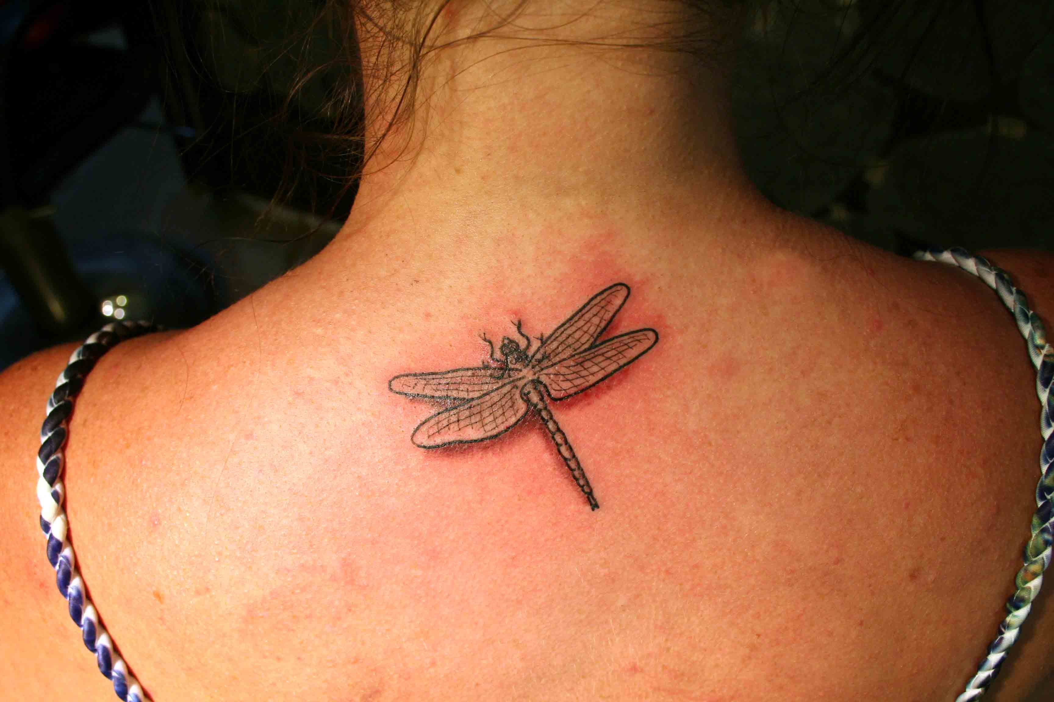 dragonfly tattoos photo - 48