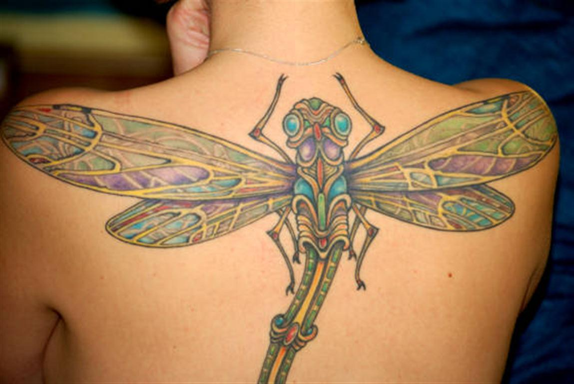 dragonfly tattoos photo - 5