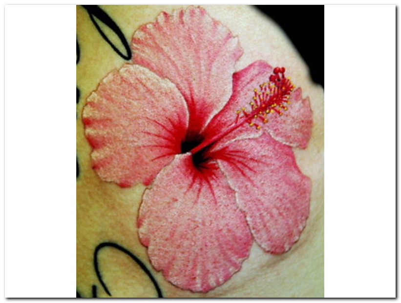 hibiscus tattoos photo - 2