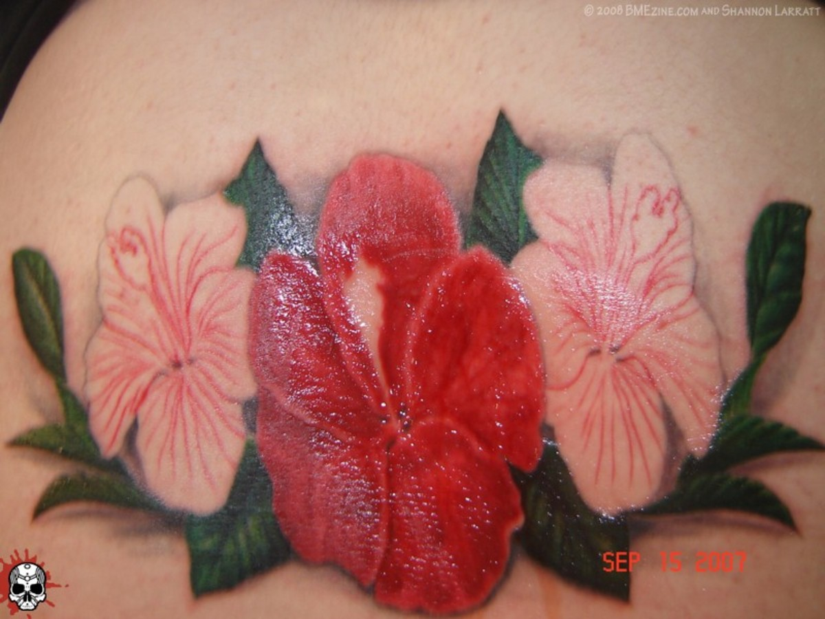 hibiscus tattoos photo - 24