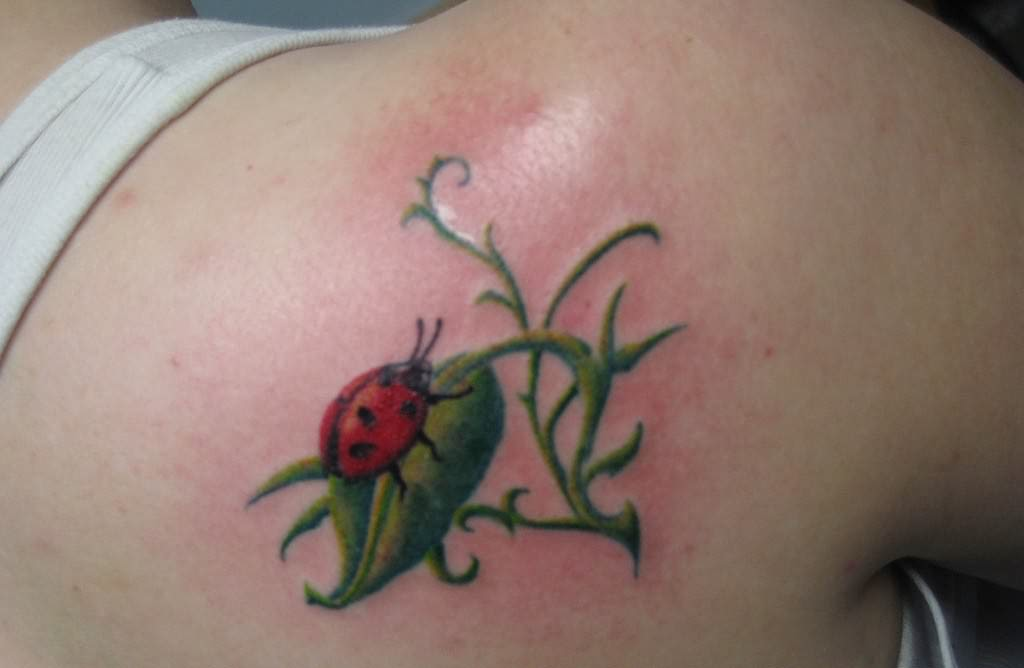 insect tattoos photo - 1
