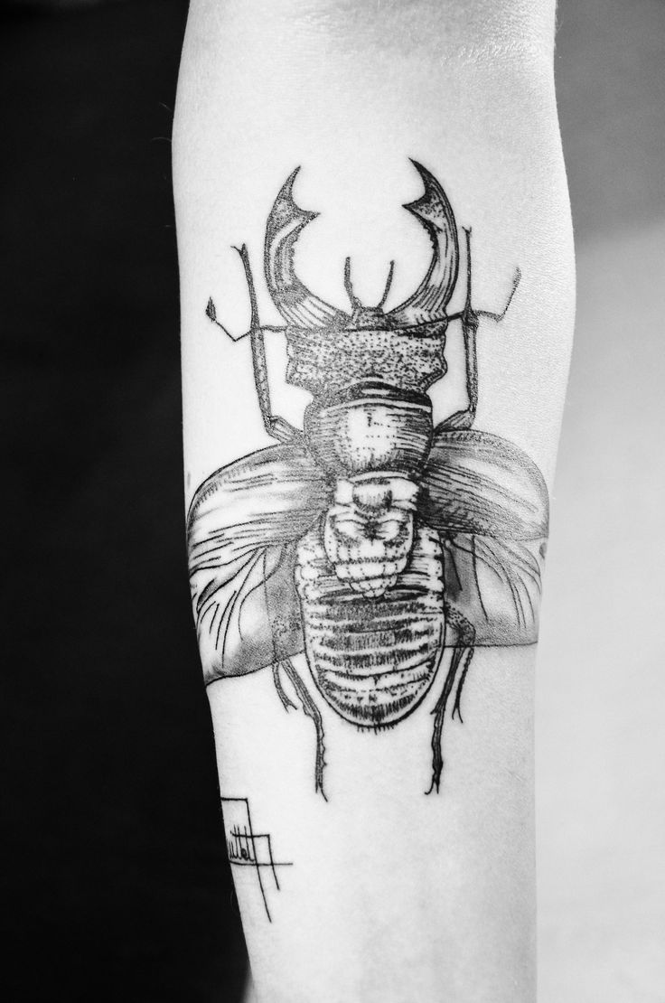 insect tattoos photo - 13