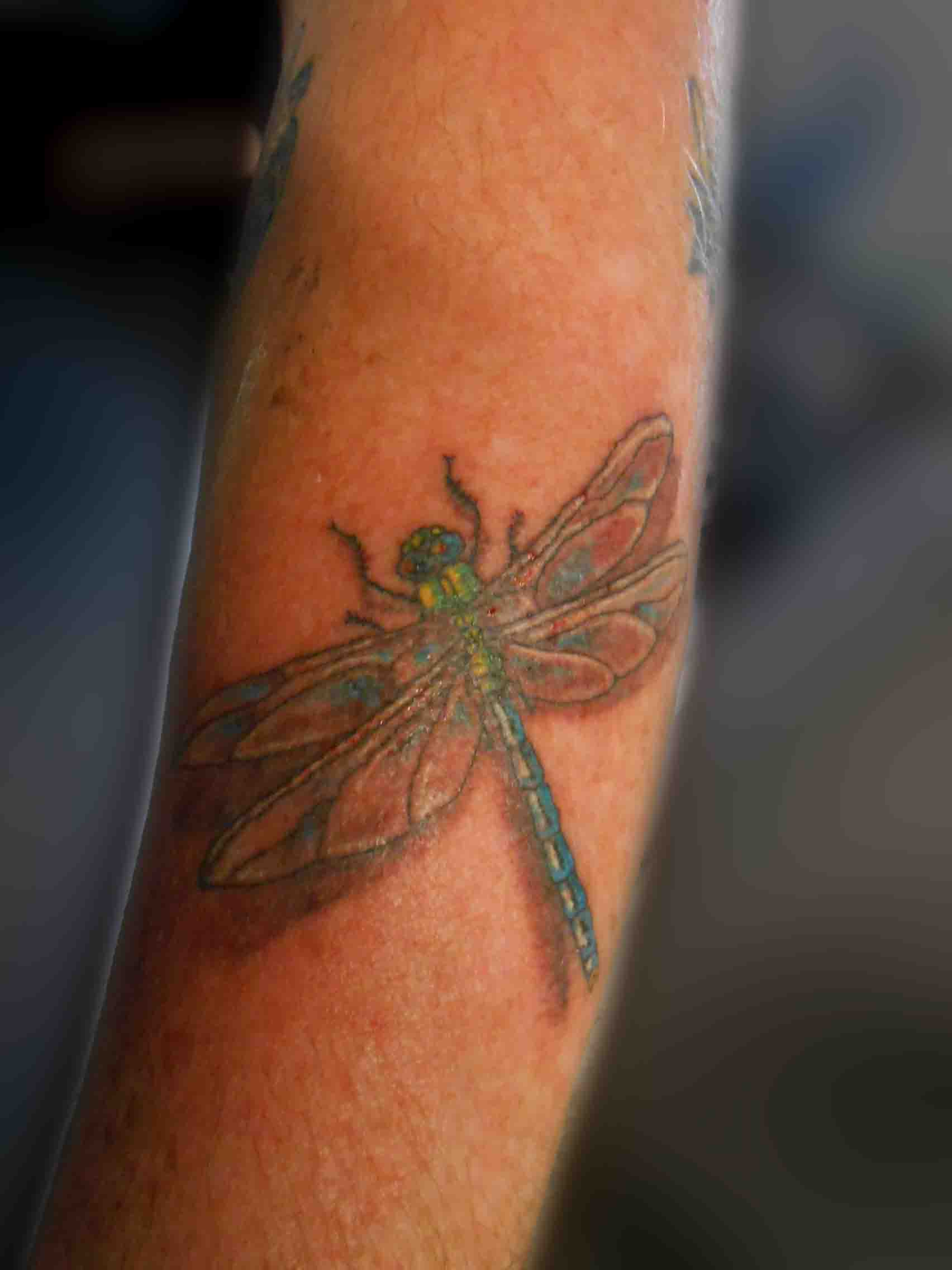 insect tattoos photo - 2
