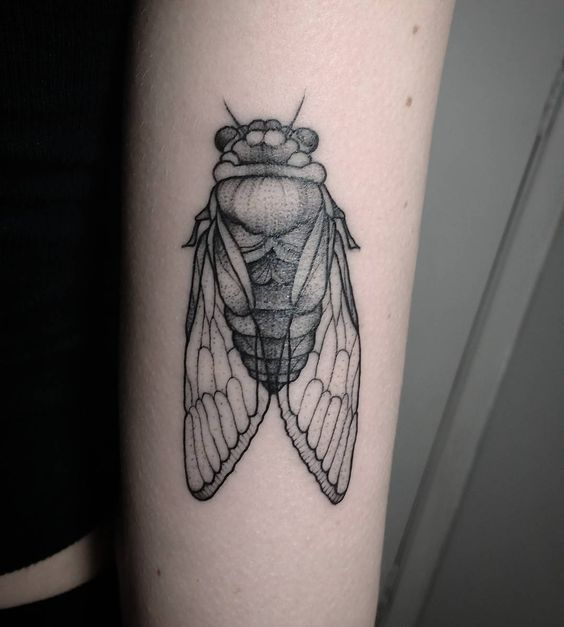 insect tattoos photo - 22