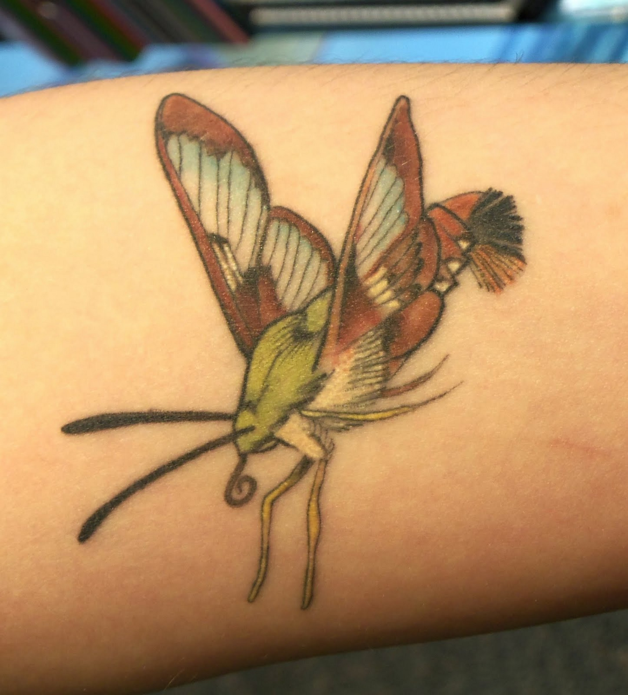 insect tattoos photo - 29