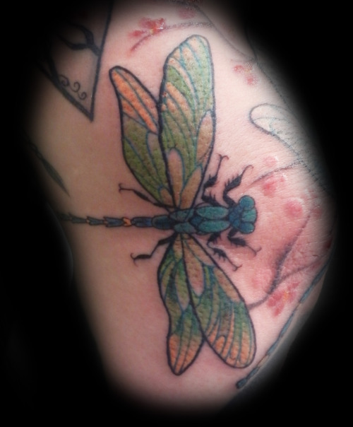 insect tattoos photo - 3