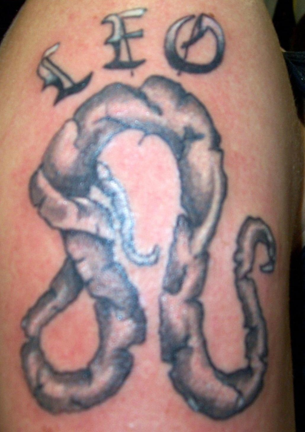 leo tattoos photo - 27