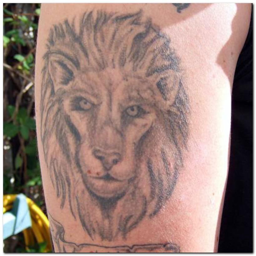 leo tattoos photo - 8