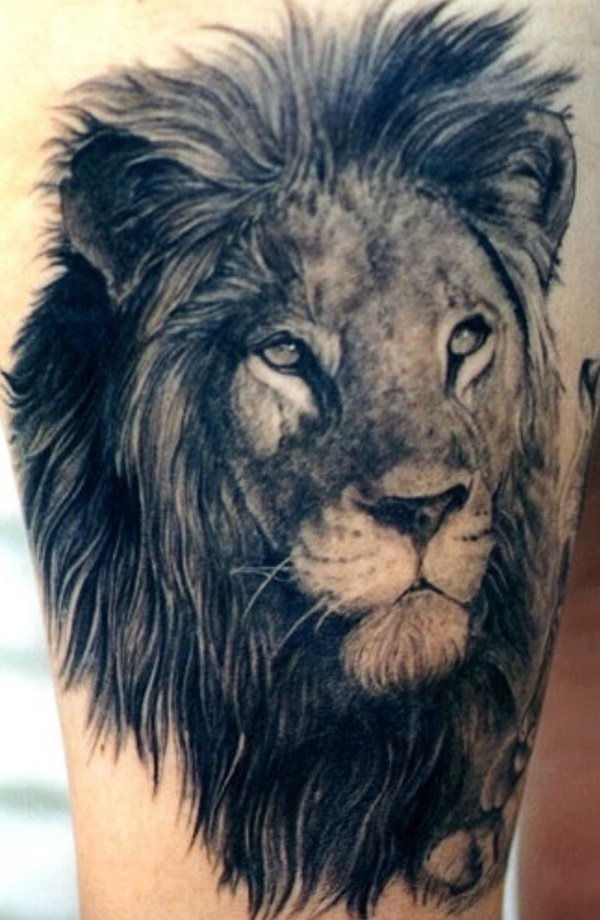 lion tattoos photo - 1