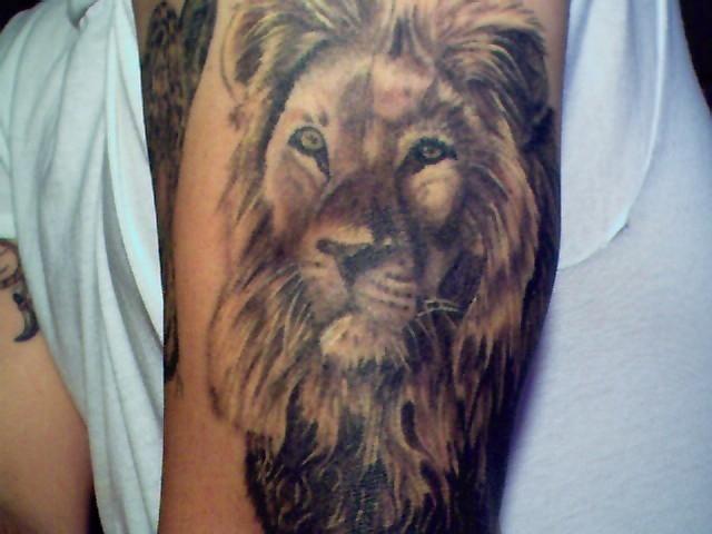 lion tattoos photo - 27
