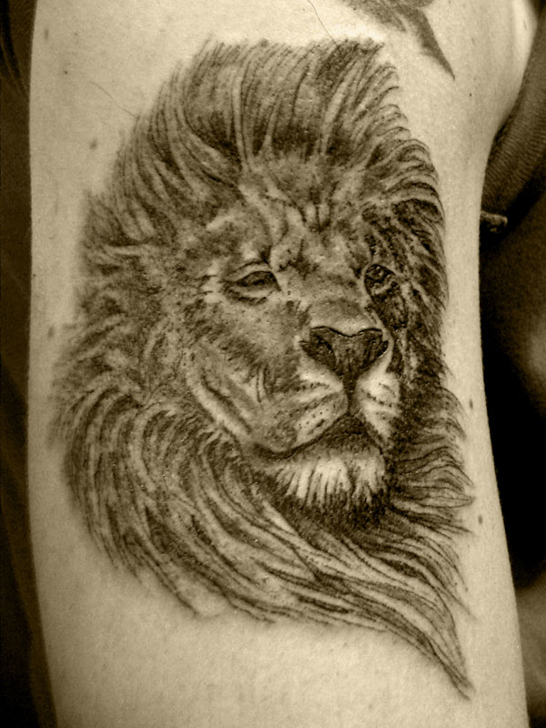 lion tattoos photo - 3
