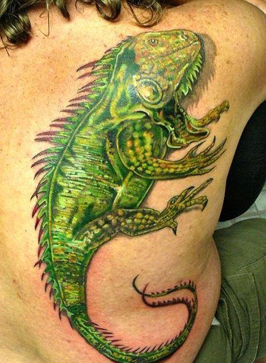 lizard tattoos photo - 36