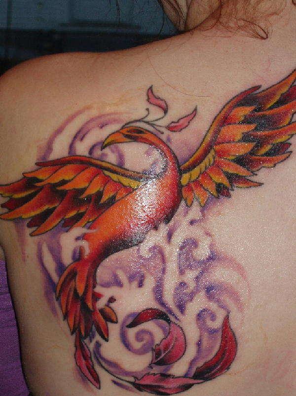 phoenix tattoos photo - 16