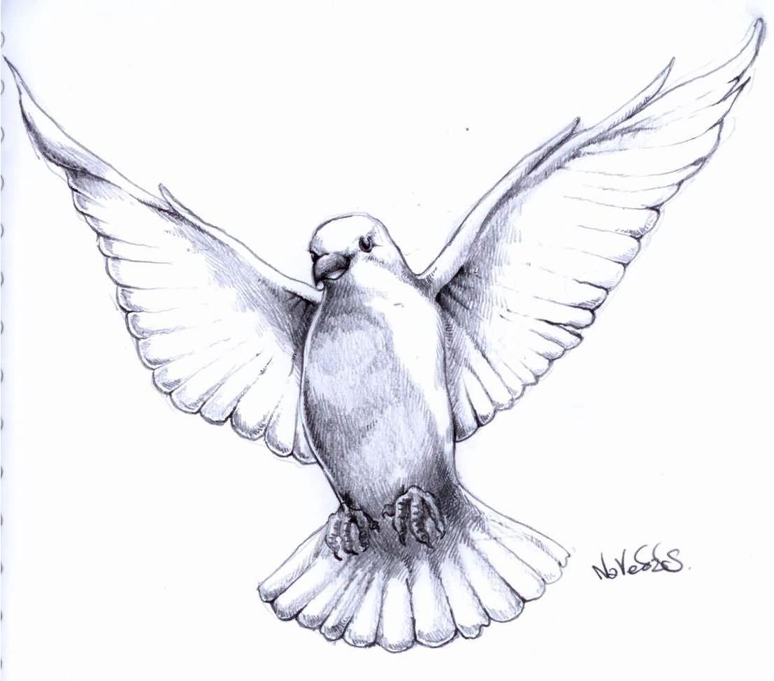 pigeon tattoos photo - 15