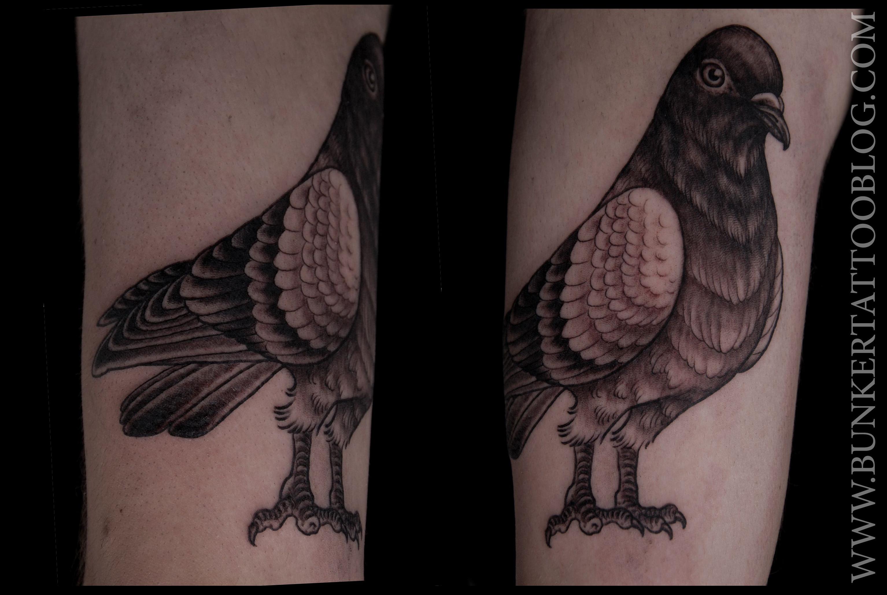 pigeon tattoos photo - 28