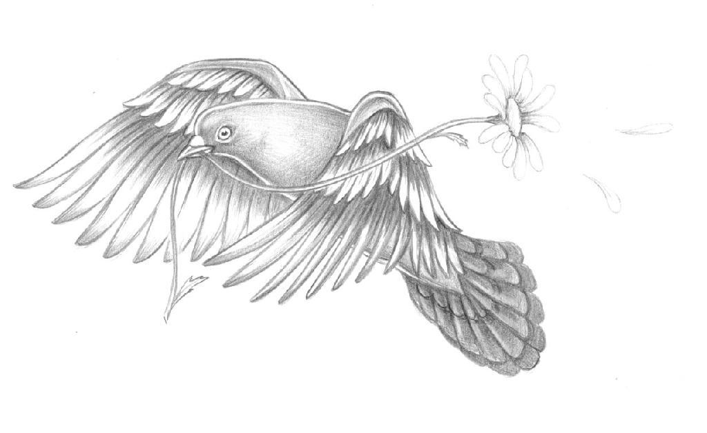 pigeon tattoos photo - 32