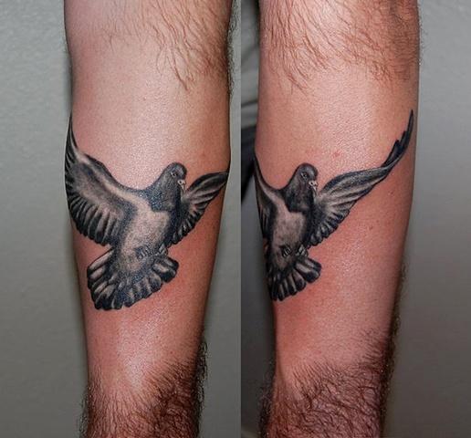 pigeon tattoos photo - 4