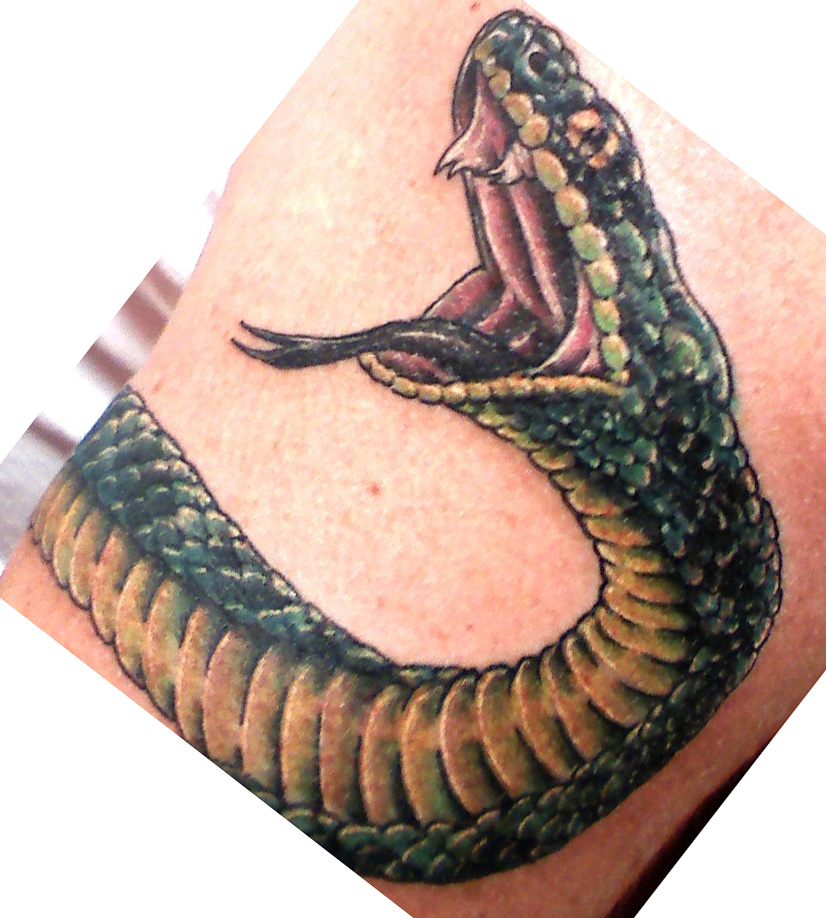 snake tattoos photo - 11