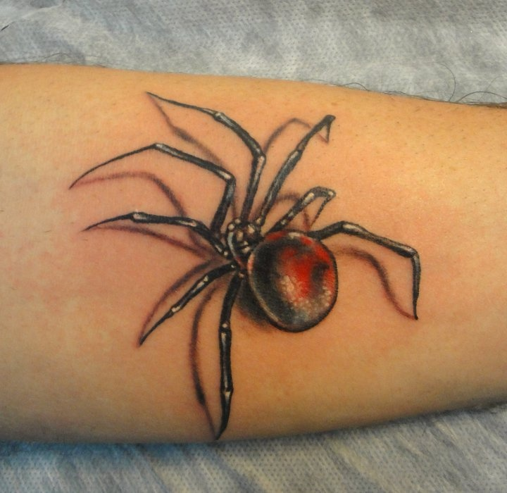 spider tattoos photo - 15