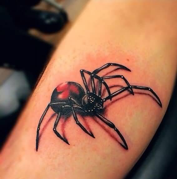 spider tattoos photo - 17