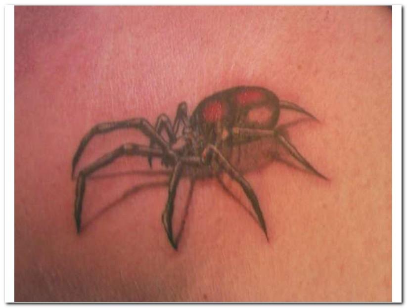 spider tattoos photo - 20