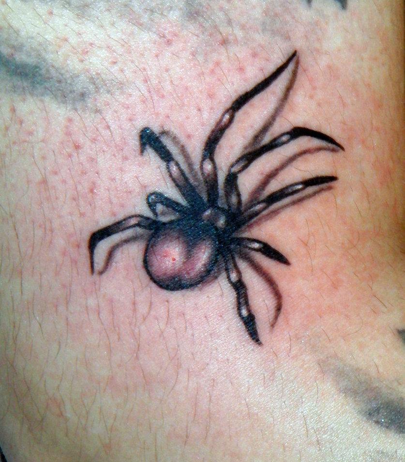 spider tattoos photo - 3