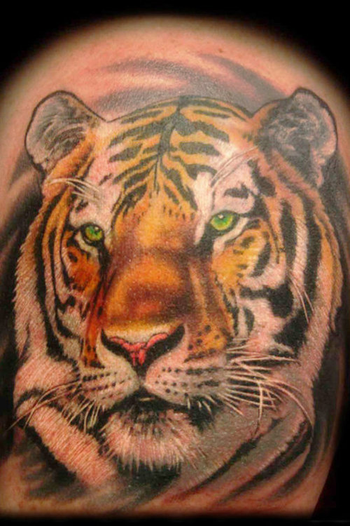 tiger tattoos photo - 23