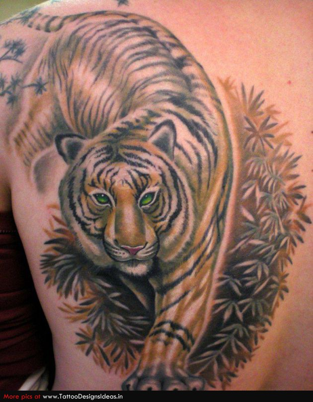 tiger tattoos photo - 24