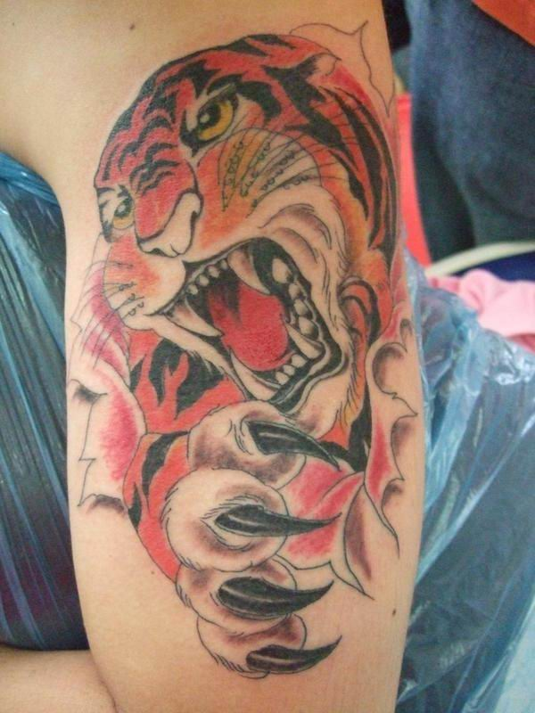 tiger tattoos photo - 28
