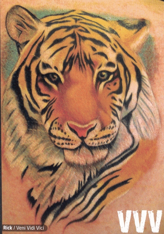 tiger tattoos photo - 3