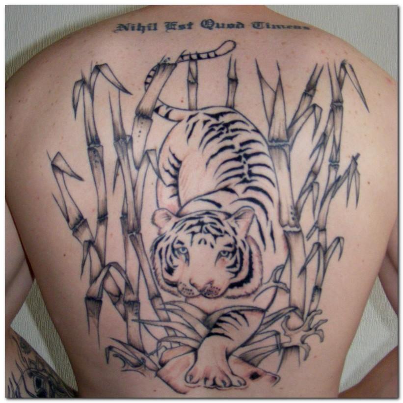tiger tattoos photo - 33