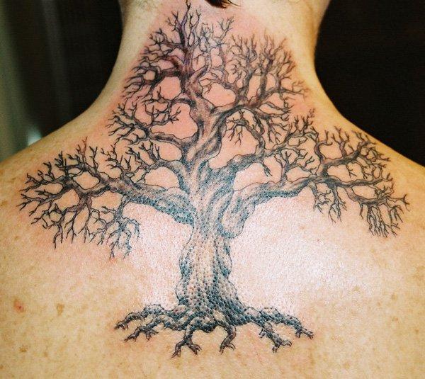 tree tattoos photo - 16