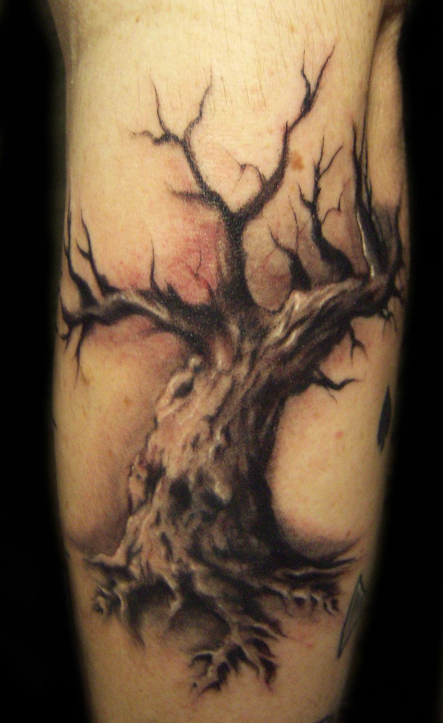 tree tattoos photo - 33