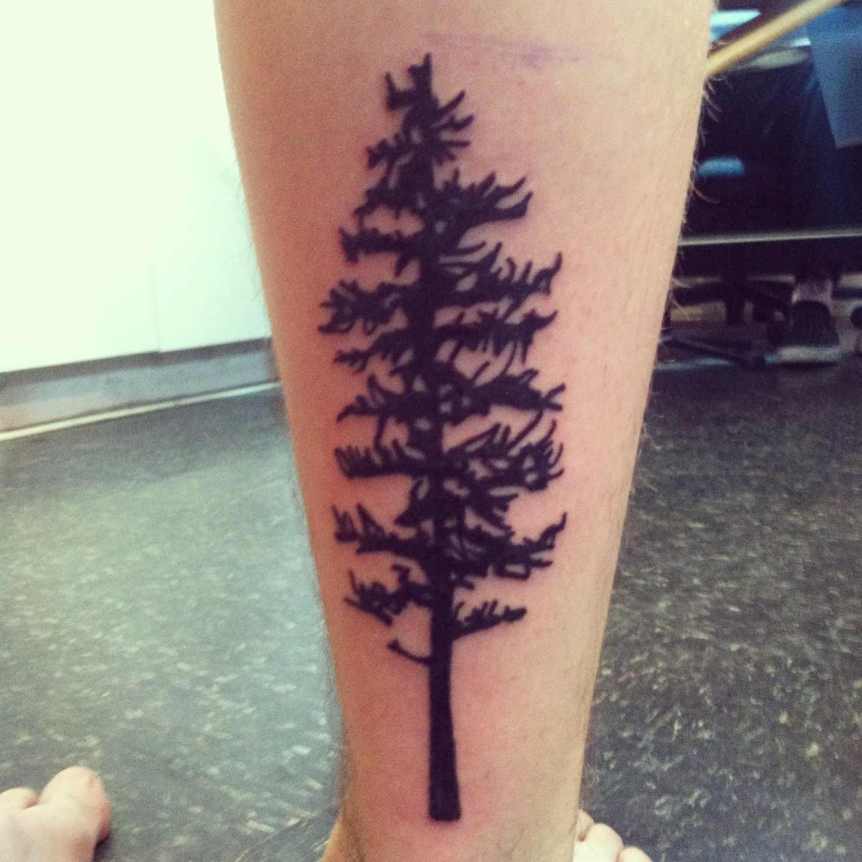 tree tattoos photo - 34