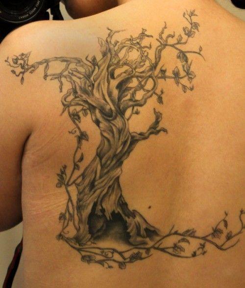 tree tattoos photo - 36
