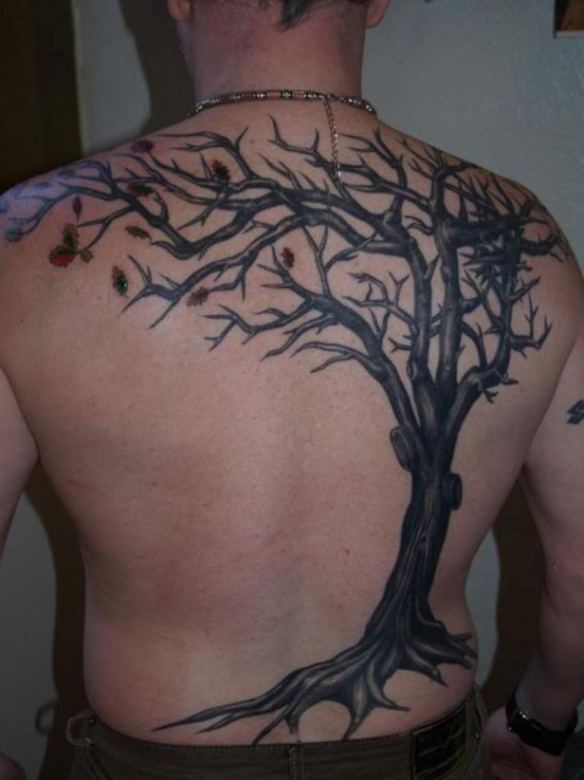 tree tattoos photo - 8