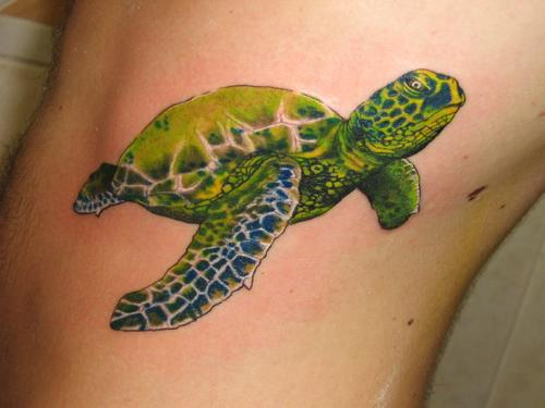 turtle tattoos photo - 18